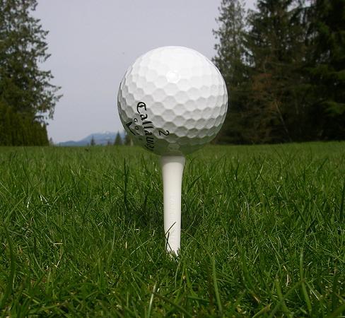 【球具知识】高尔夫Tee真能帮你打得更远吗?